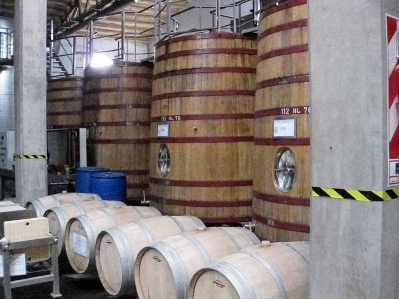 The family-owned wineries are a great way to discover fantastic Mendoza wine.