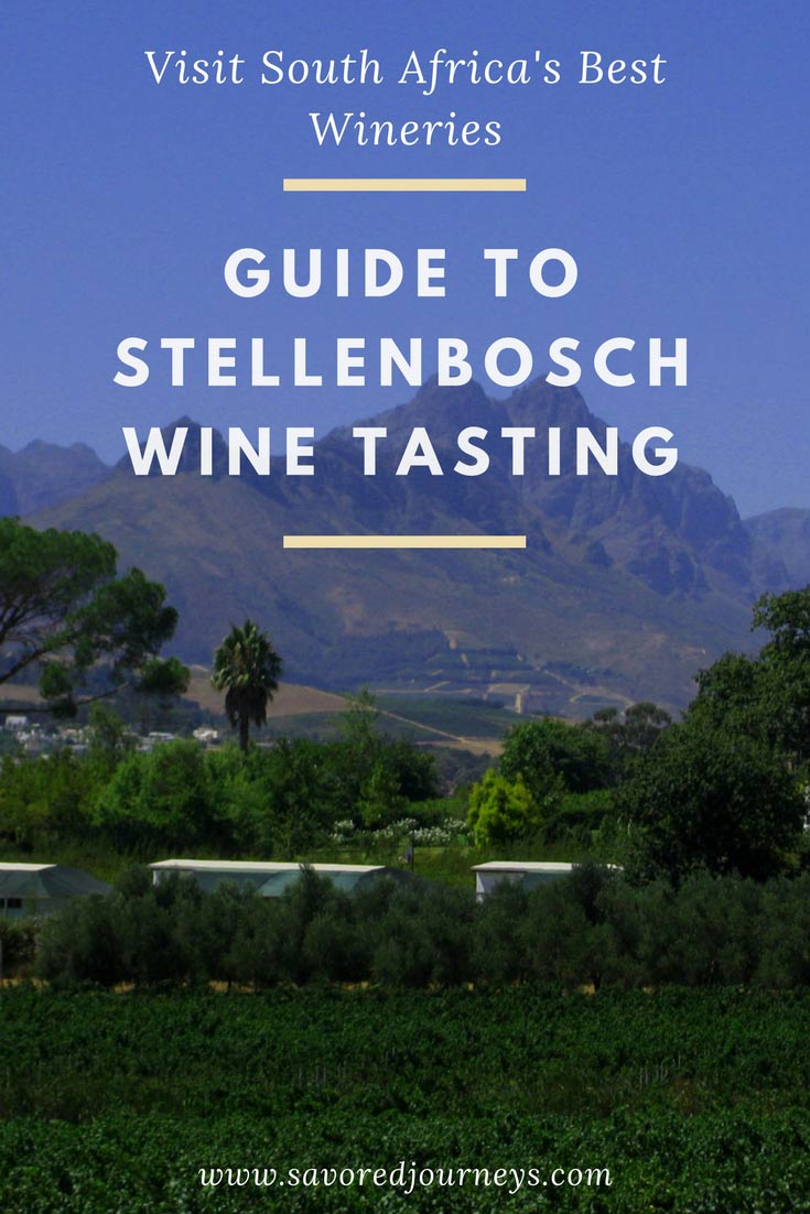 Visit South Africa's best wineries: Guide to Stellenbosch wine tasting