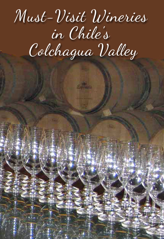 Must-Visit Wineries in Chile's Colchagua Valley