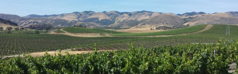 Paso Robles wine region