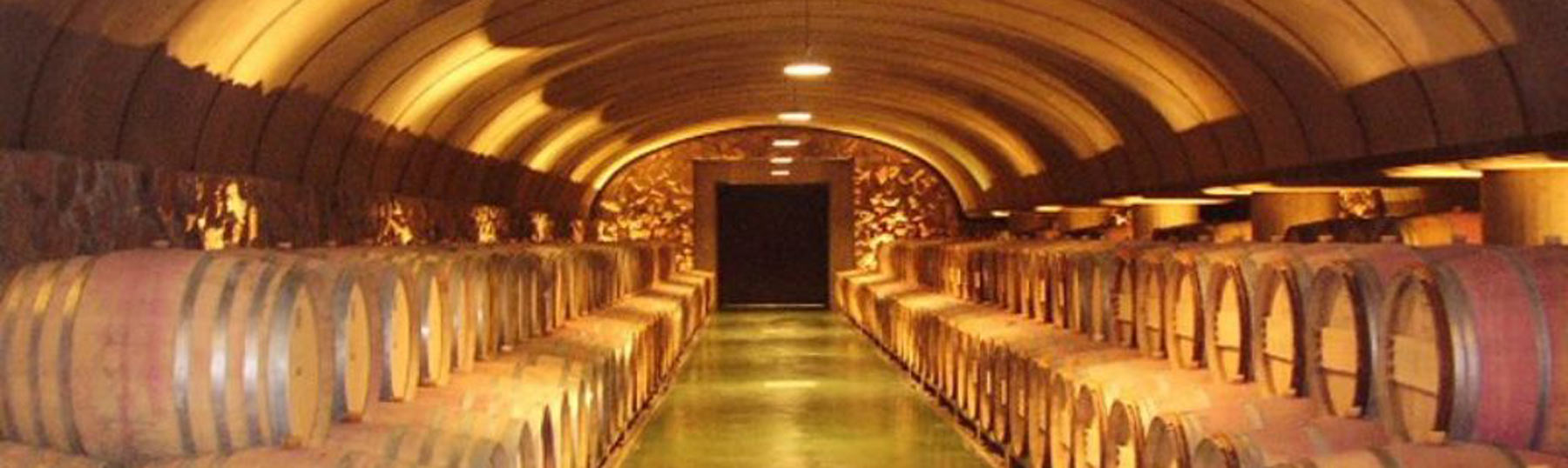How to Plan the Perfect Mendoza Wine Tour