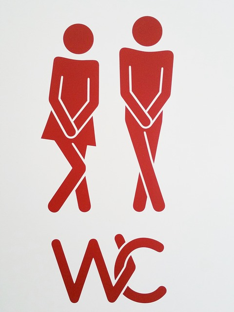 WC stands for Water Closet (aka the bathroom)