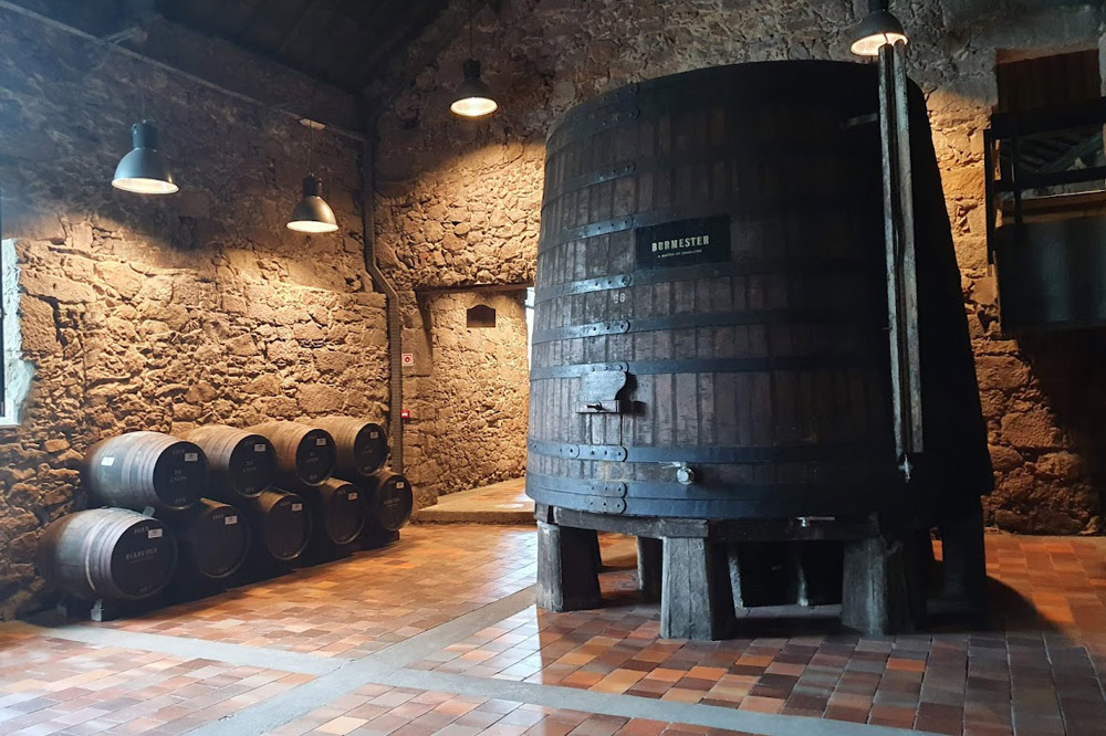 Burmester Port Cellar