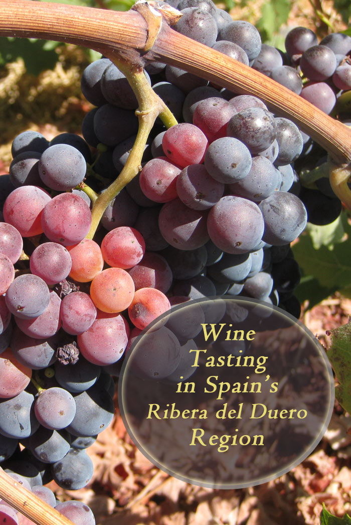 Wine tasting in Spain's Ribera del Duero Region