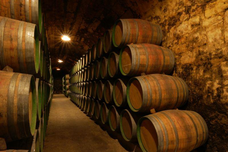 rioja wine barrels
