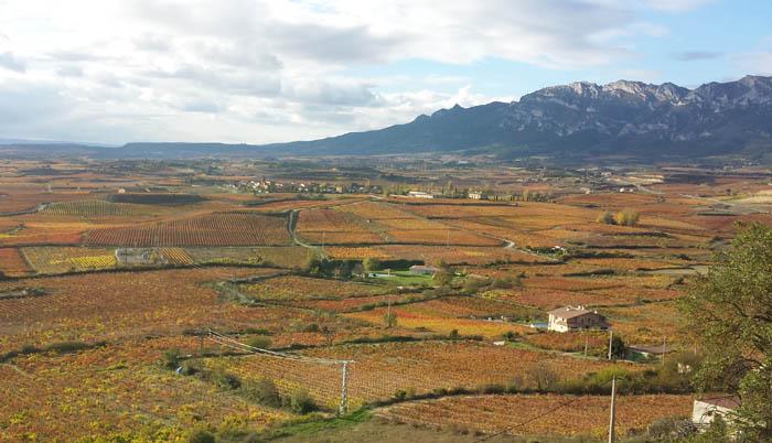 La Rioja valley