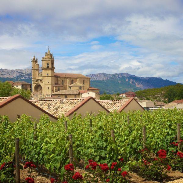 Winery in Rioja Spain