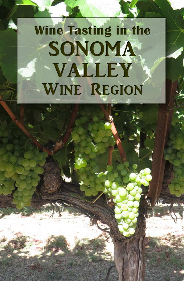 Wine Tasting at Sonoma Valley Wineries