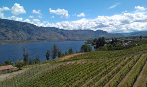 Lake Okanagan and surrounding vineyards