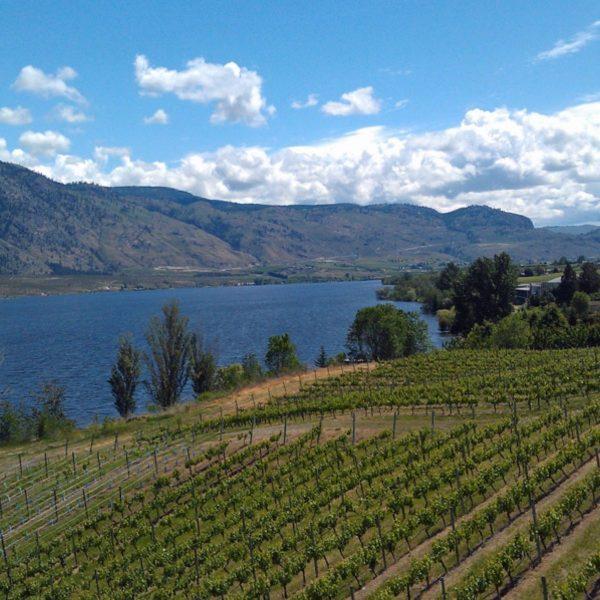Lake Okanagan and surrounding vineyards