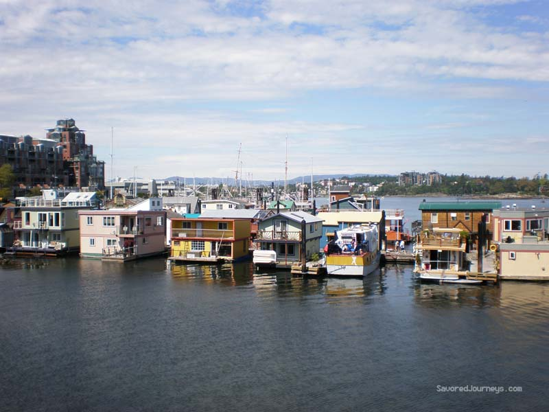 Harbour houseboats