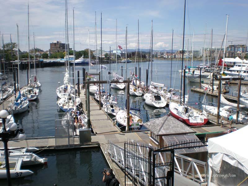 Victoria's busy marina
