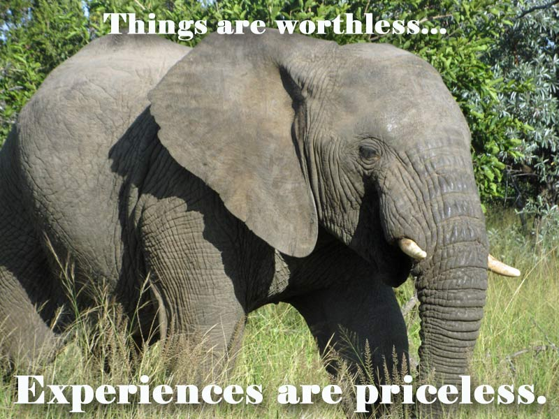 Experiences are priceless