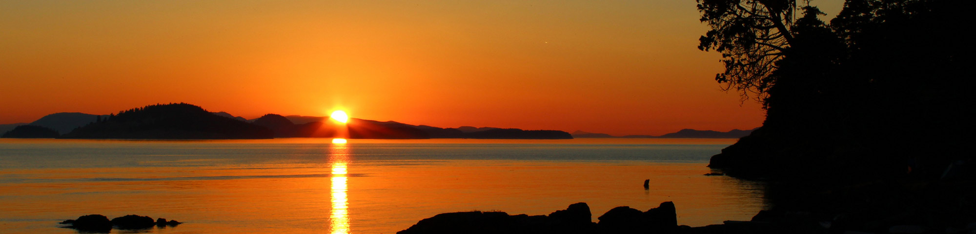 Top Things to Do in the San Juan Islands