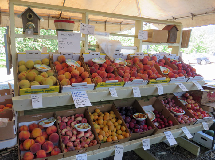 Draper Girls Country Farm Fruit stand