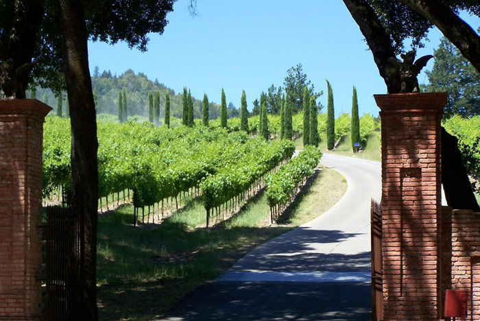 A Napa Valley Winery