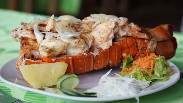 Lobster in Cuba
