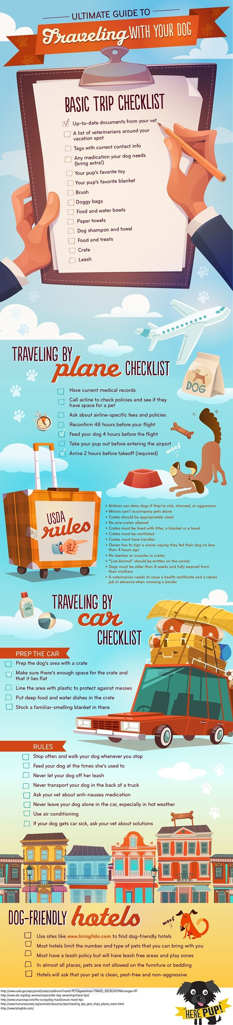 How to Travel With Your Dog (Infographic by HerePub)