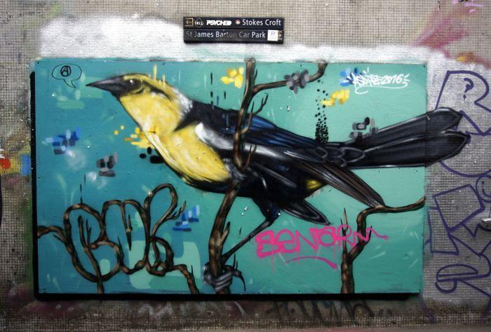 Street art bird