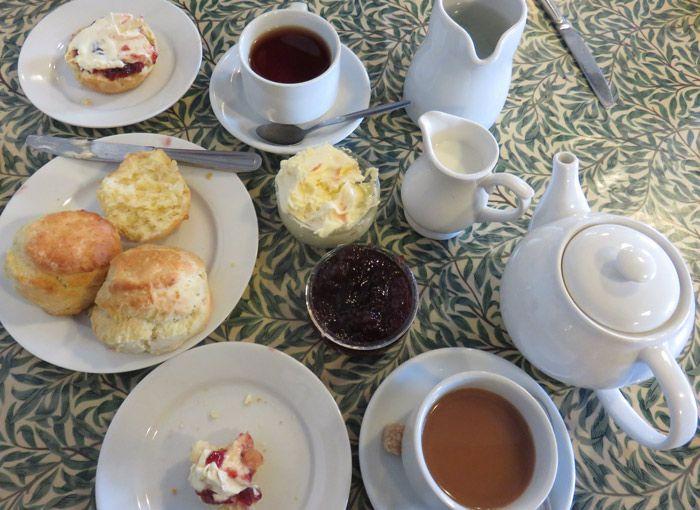 The makings of a cream tea - tea, scones, clotted cream and jam.