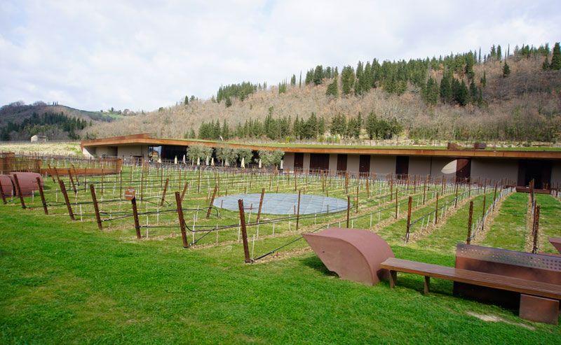 The beautiful terrace and vineyards of Antinori.