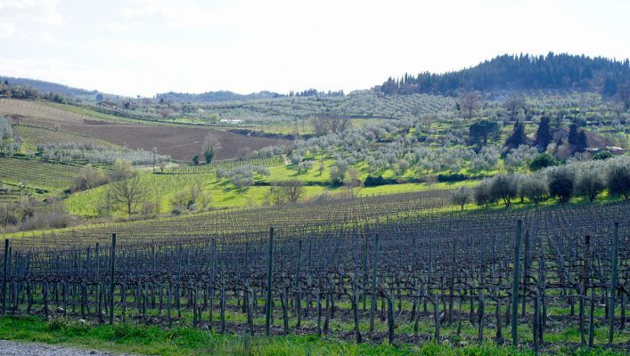 Self-Guided winery tour through Chianti