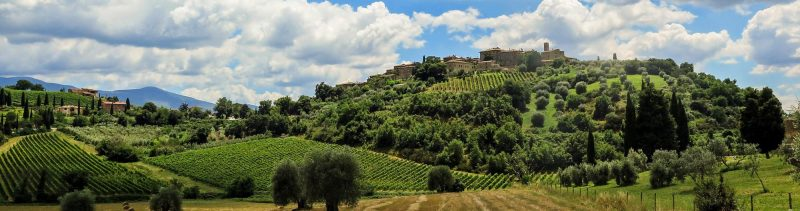 Self-guided Chianti wineries