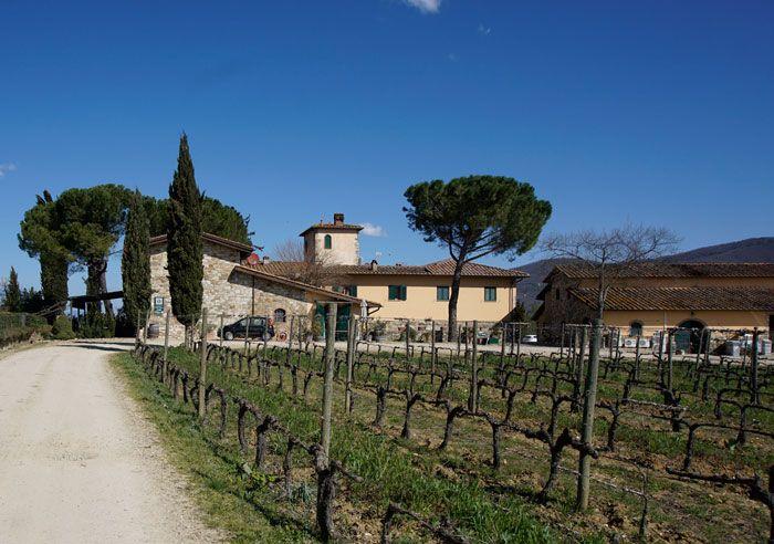 Fattoria Viticcio Farmhouse and Vineyards
