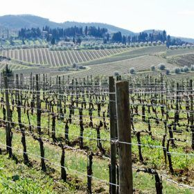 Chianti wine region of Italy