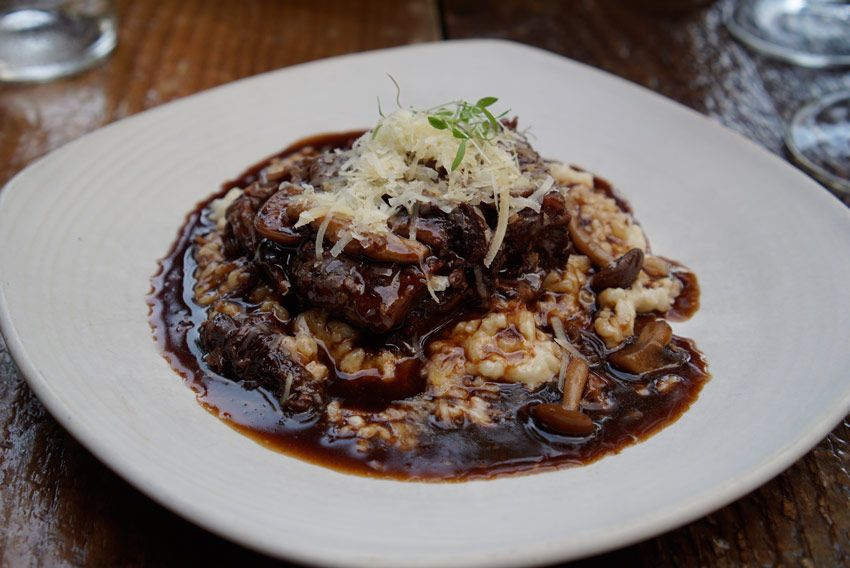 Red Feather's Short Ribs and Risotto