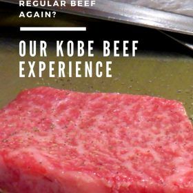 Kobe beef is unlike any other beef in the world, and once you try it, it will be very difficult to go back!