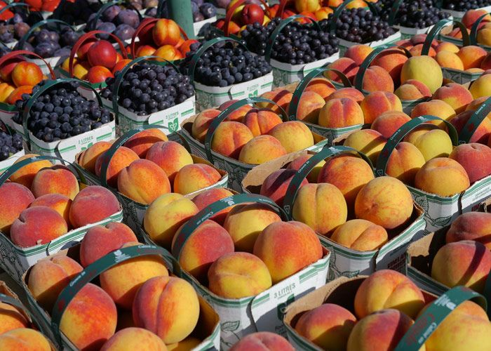 Niagara area peach harvest