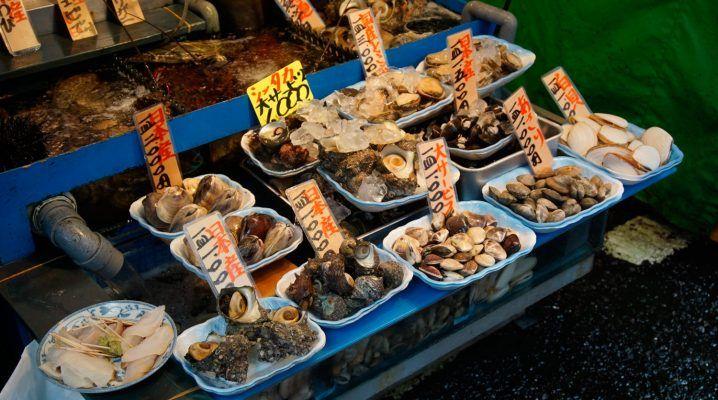 Tsukiji fish market with Japan Wonder Travel