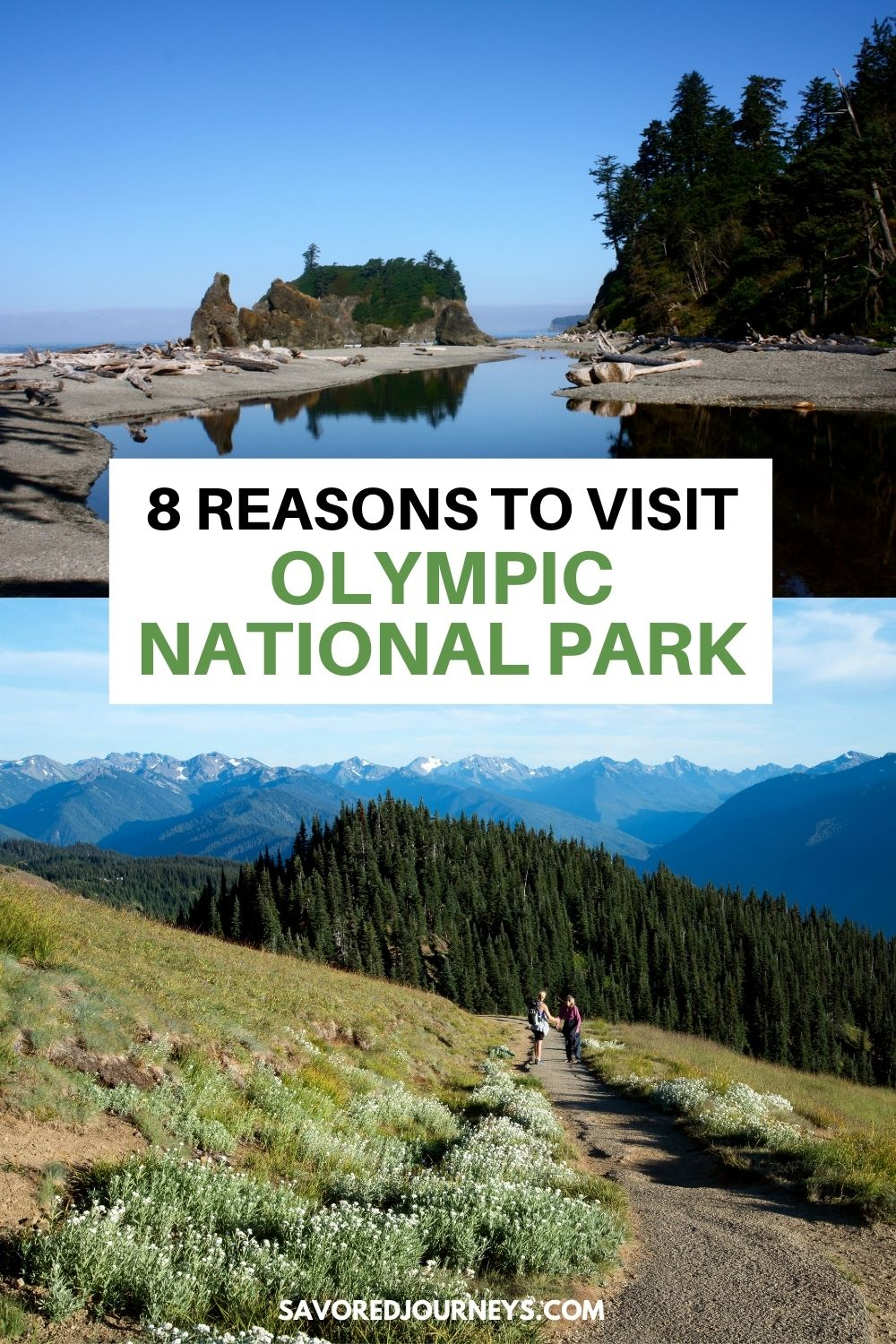8 Reasons to Visit Olympic National Park