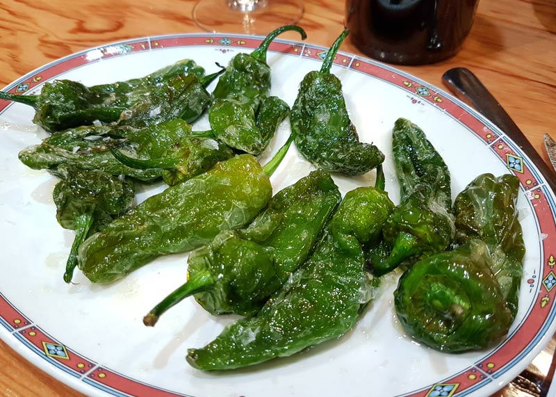 Pimientos de Padron at Bar Nestor