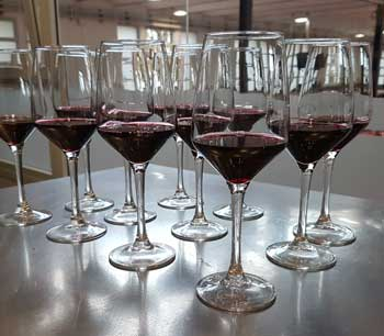 Wine tasting, wine tourism and enotourism