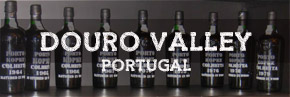 Duoro Valley wine region Portugal