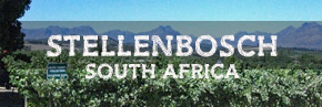Stellenbosch wine region South Africa
