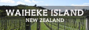 Waiheke Island wine region New Zealand