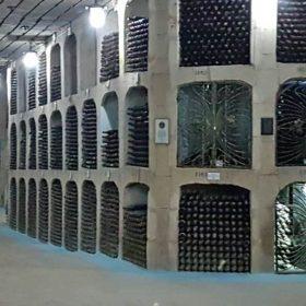 wine cellar milesti mici