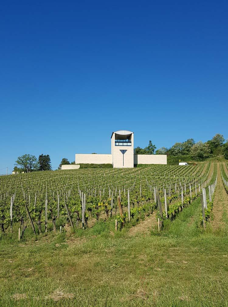 Where to go wine tasting in Bordeaux