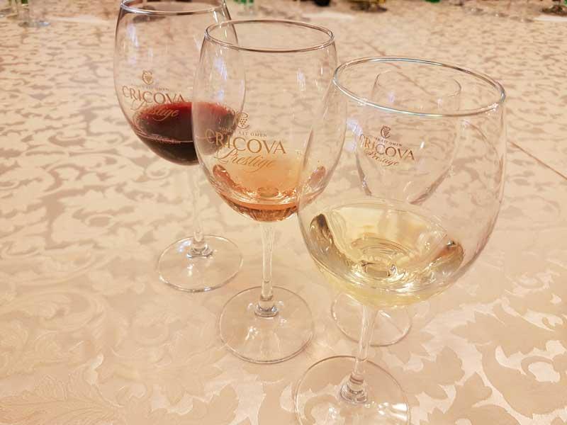 Cricova wine tasting