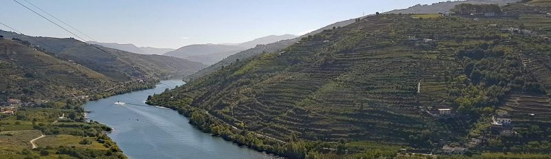 Douro Valley Wine Region Portugal