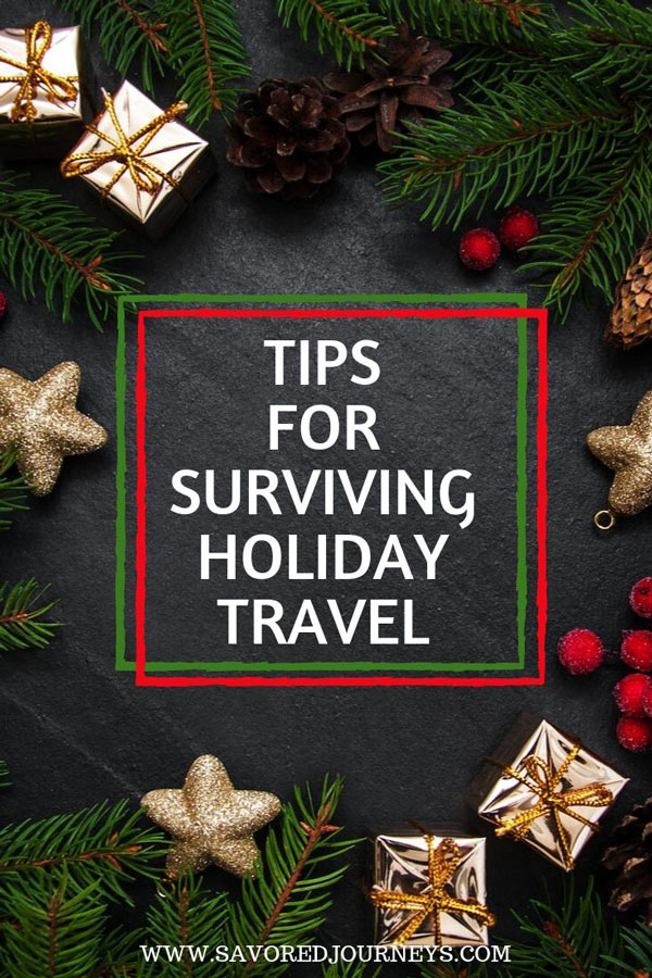 survive holiday travel