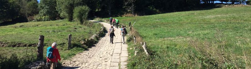 Walking the Camino de Santiago routes