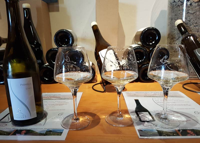 White wines of Philippe Grisard