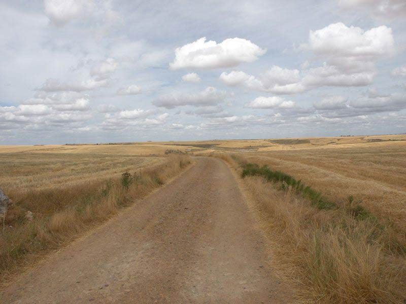 The Meseta is a plateau at the center of the French Way route