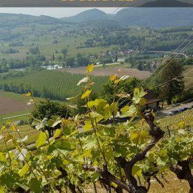 Wine Tasting in the Savoie Wine Region