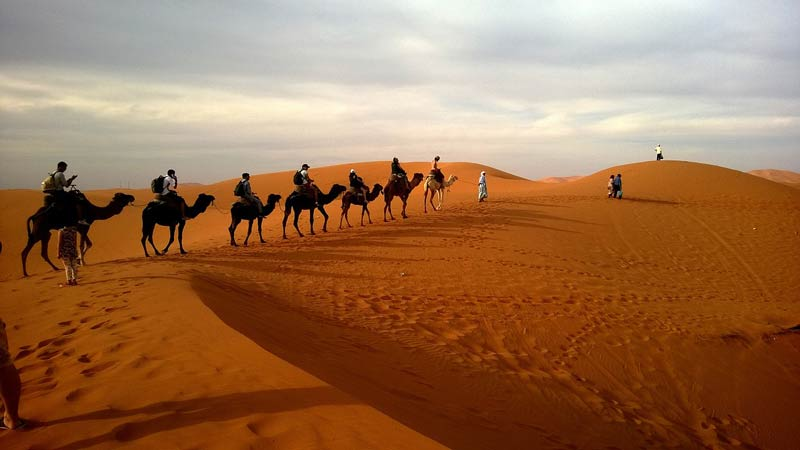 camel ride in the dessert