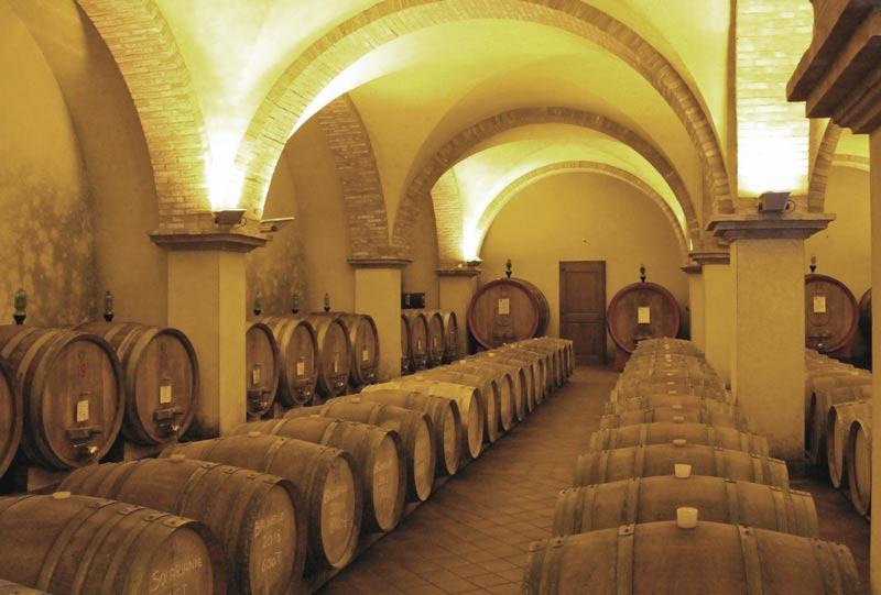 Solaria's wine cellar